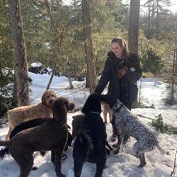 Dog Walker & Pet Sitter in Rangiora, Canterbury — Krissy M. Pet Care Profile